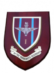 1st BN Parachute Regiment Army Military Wall Plaque Para